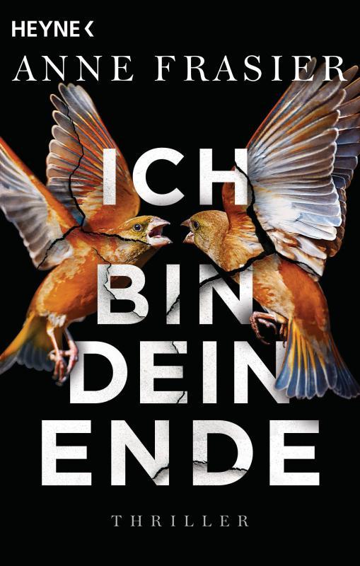 Cover-Bild Ich bin dein Ende