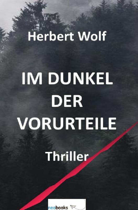 Cover-Bild Im Dunkel der Vorurteile