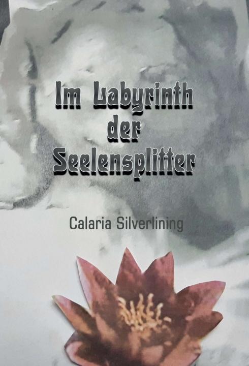 Cover-Bild Im Labyrinth der Seelensplitter