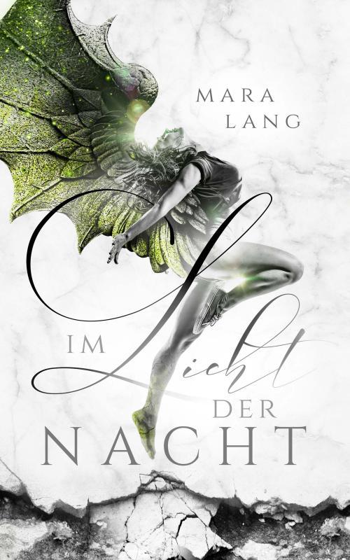 Cover-Bild Im Licht der Nacht