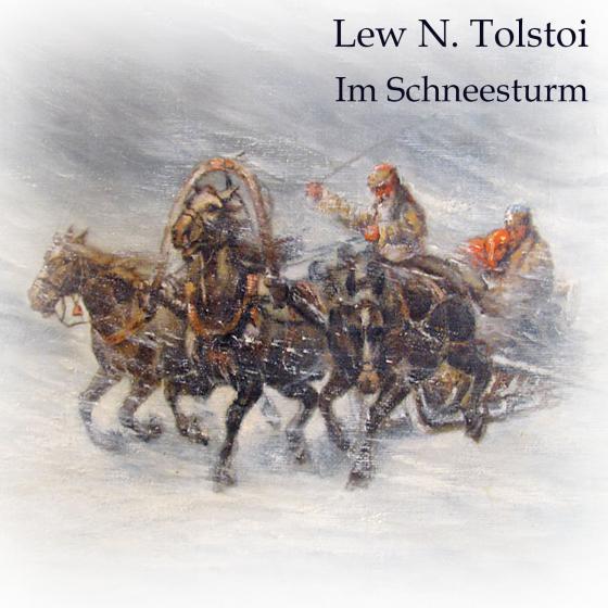Cover-Bild Im Schneesturm