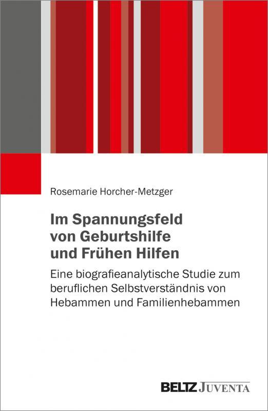 Cover-Bild Im Spannungsfeld von Geburtshilfe und Frühen Hilfen