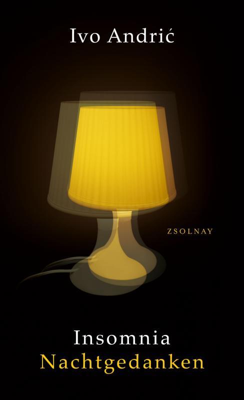 Cover-Bild Insomnia