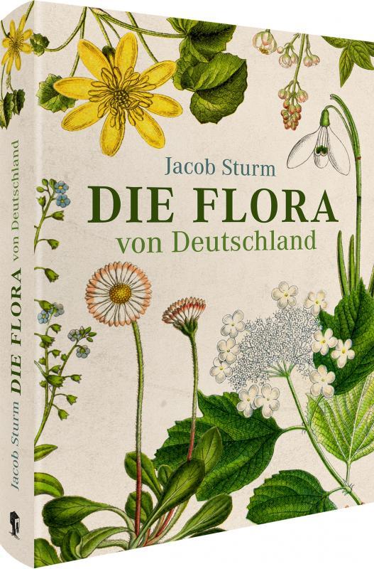 Cover-Bild Jacob Sturm – Die Flora von Deutschland