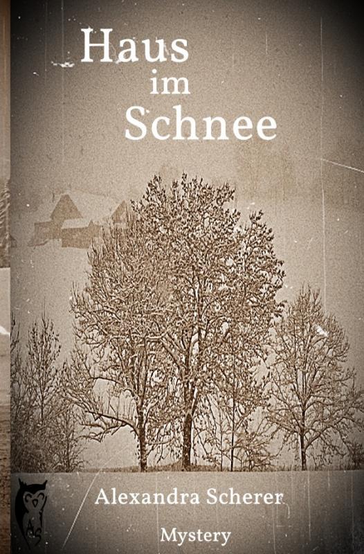 Cover-Bild Kathy O'Banion Mystery / Haus im Schnee