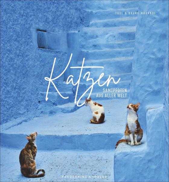 Cover-Bild Katzen