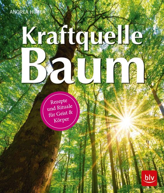 Cover-Bild Kraftquelle Baum