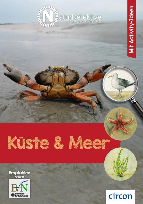 Cover-Bild Küste und Meer