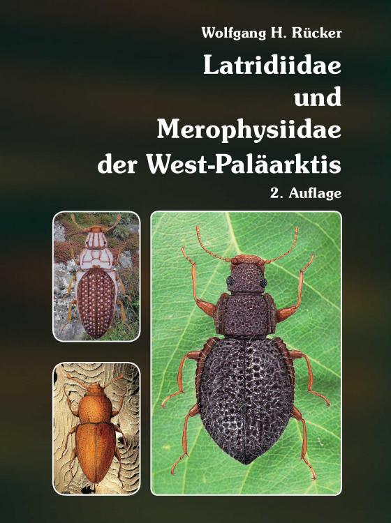 Cover-Bild Latridiidae und Merophysiidae der West-Paläarktis