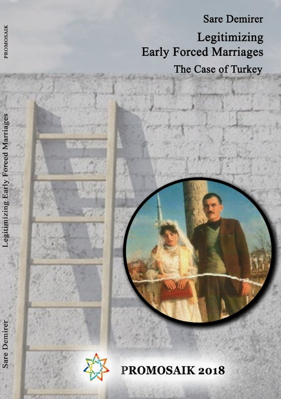 Cover-Bild Legitimizing Early Forced Marriages: the Case of Turkey
