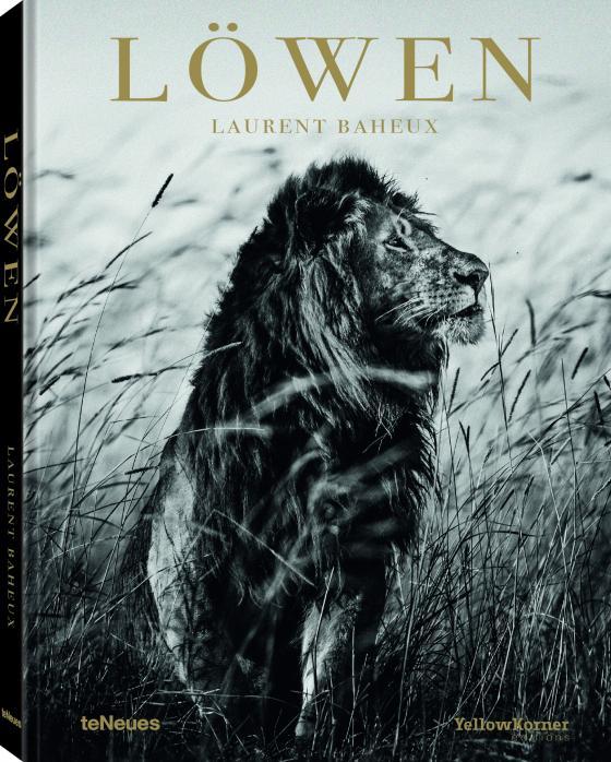 Cover-Bild Löwen