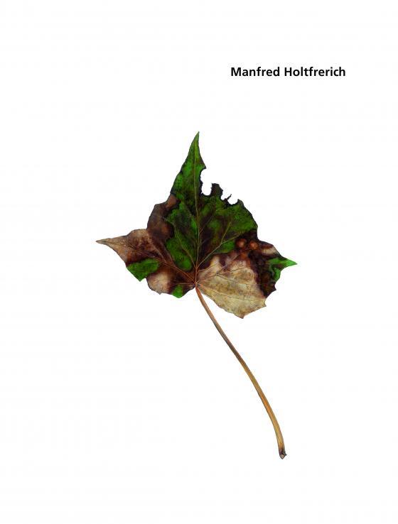 Cover-Bild Manfred Holtfrerich. Blätter 1 - 236