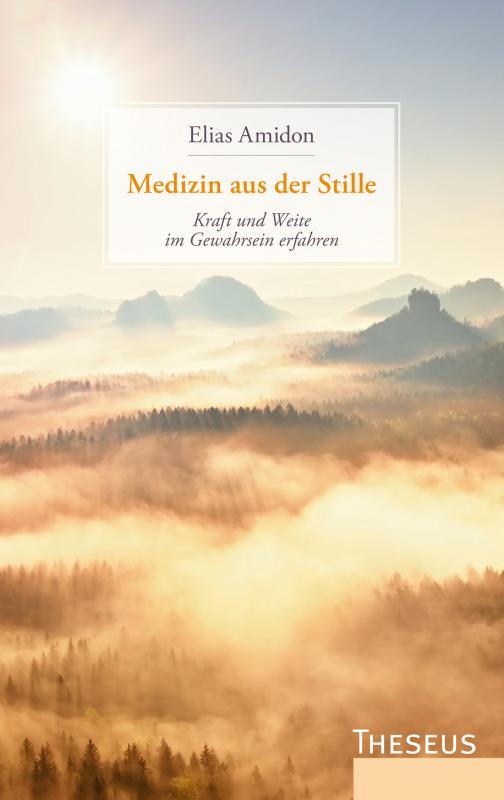 Cover-Bild Medizin aus der Stille