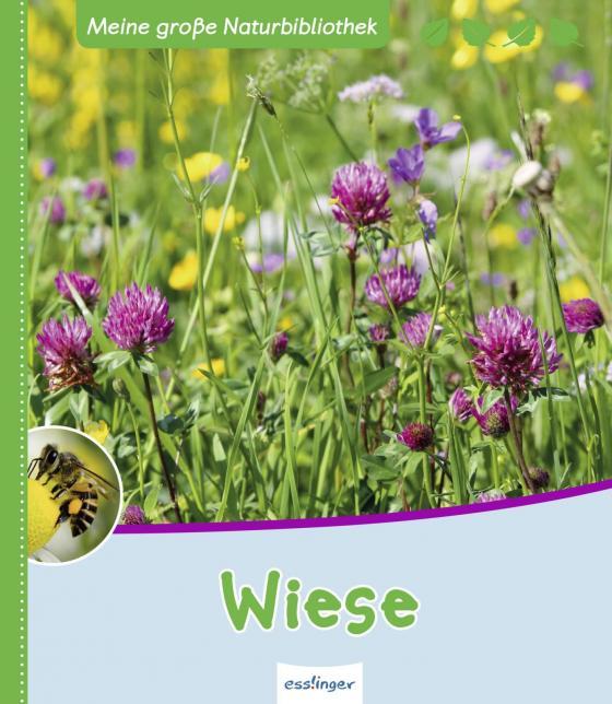 Cover-Bild Meine große Naturbibliothek: Wiese