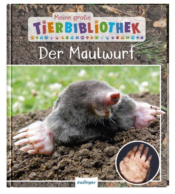 Cover-Bild Meine große Tierbibliothek: Der Maulwurf