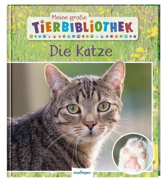 Cover-Bild Meine große Tierbibliothek: Die Katze