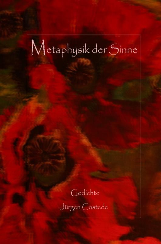 Cover-Bild Metaphysik der Sinne | Gedichte