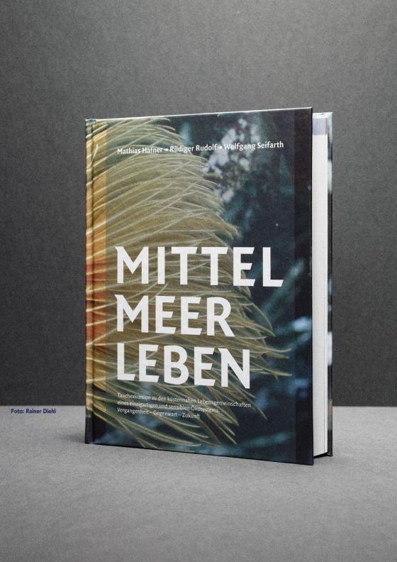 Cover-Bild Mittelmeerleben