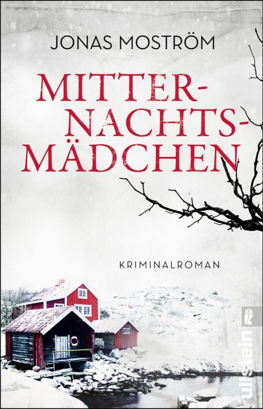 Cover-Bild Mitternachtsmädchen