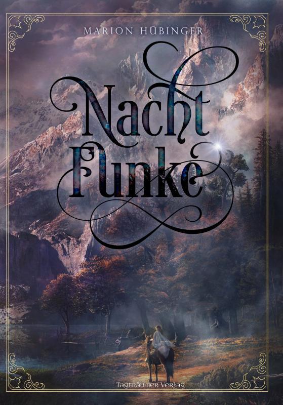 Cover-Bild Nachtfunke