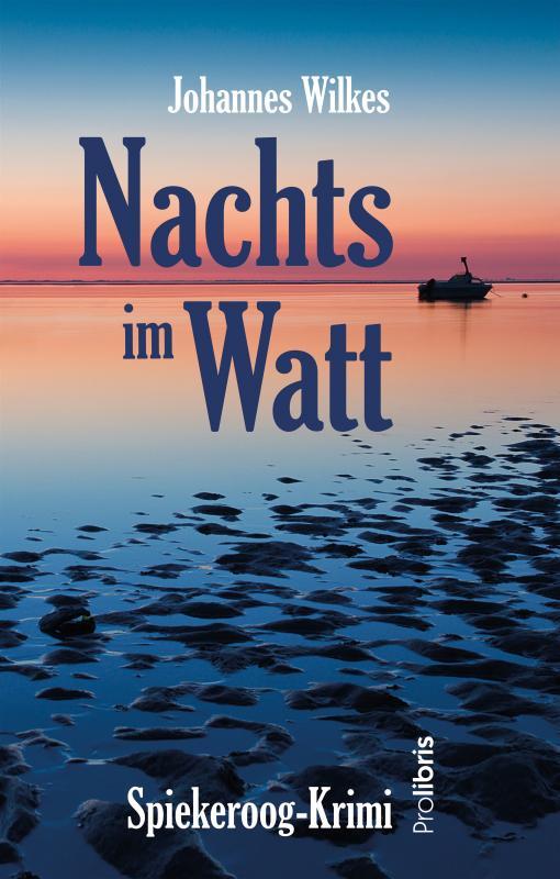 Cover-Bild Nachts im Watt