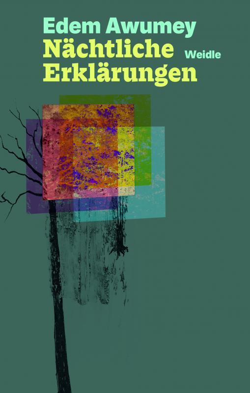 Cover-Bild Nächtliche Erklärungen