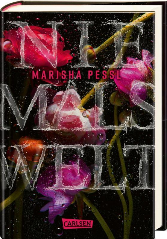 Cover-Bild Niemalswelt