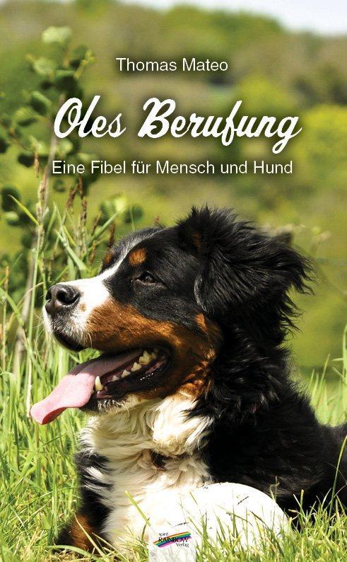 Cover-Bild Oles Berufung