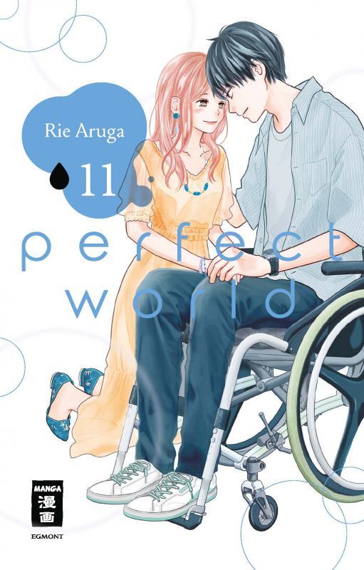 Cover-Bild Perfect World 11