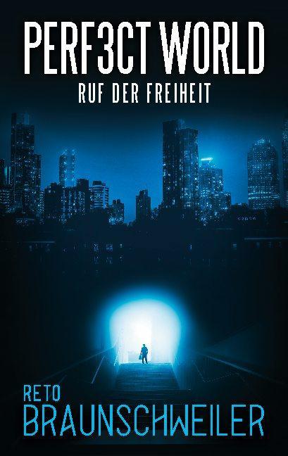 Cover-Bild Perfect World
