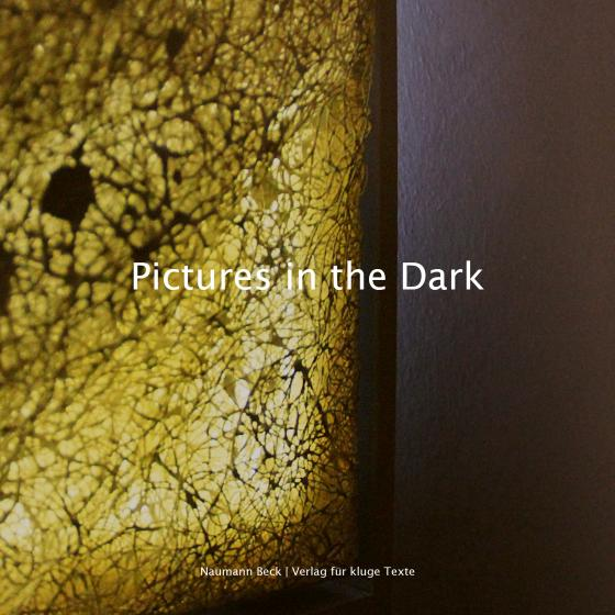 Cover-Bild Pictures in the Dark