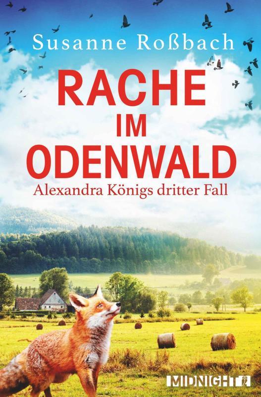 Cover-Bild Rache im Odenwald