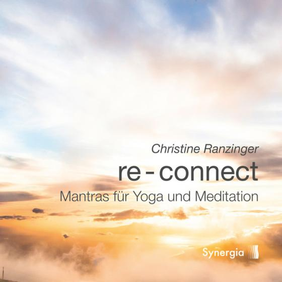 Cover-Bild Re-Connect