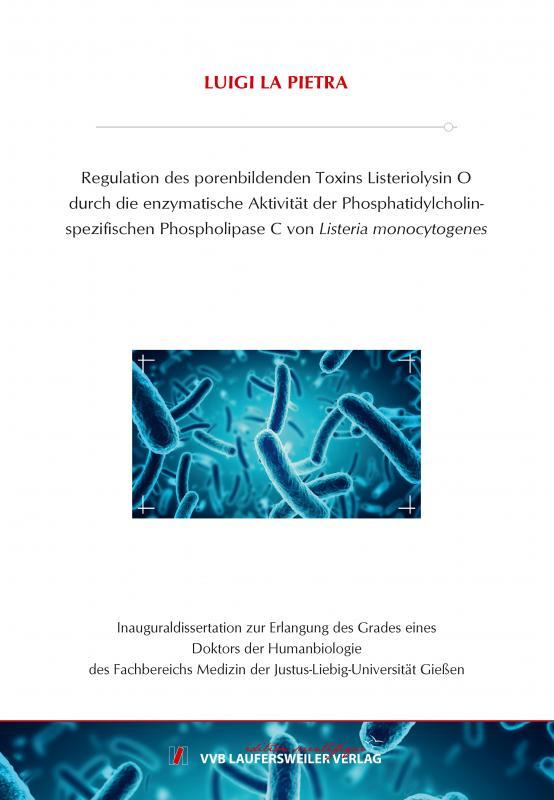 Cover-Bild Regulation des porenbildenden Toxins Listeriolysin O durch die enzymatische Aktivität der Phosphatidylcholin-spezifischen Phospholipase C von Listeria monocytogenes
