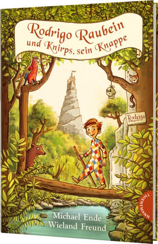 Cover-Bild Rodrigo Raubein und Knirps, sein Knappe
