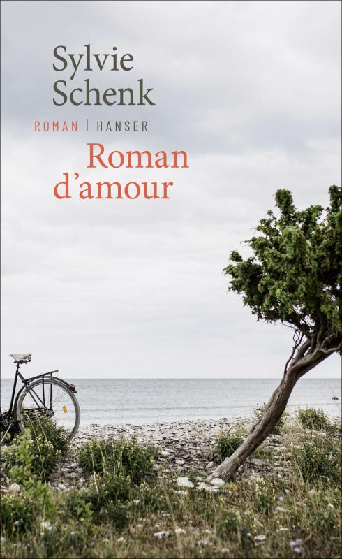 Cover-Bild Roman d'amour
