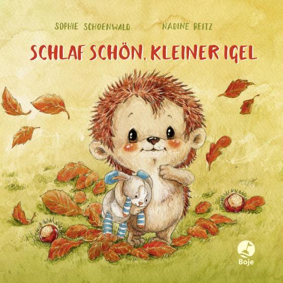 Cover-Bild Schlaf schön, kleiner Igel (Mini-Ausgabe)