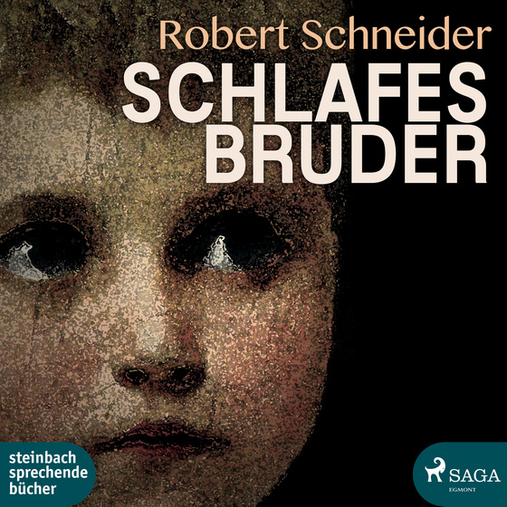 Cover-Bild Schlafes Bruder