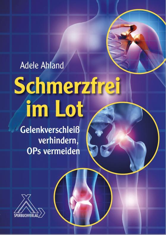 Cover-Bild Schmerzfrei im Lot