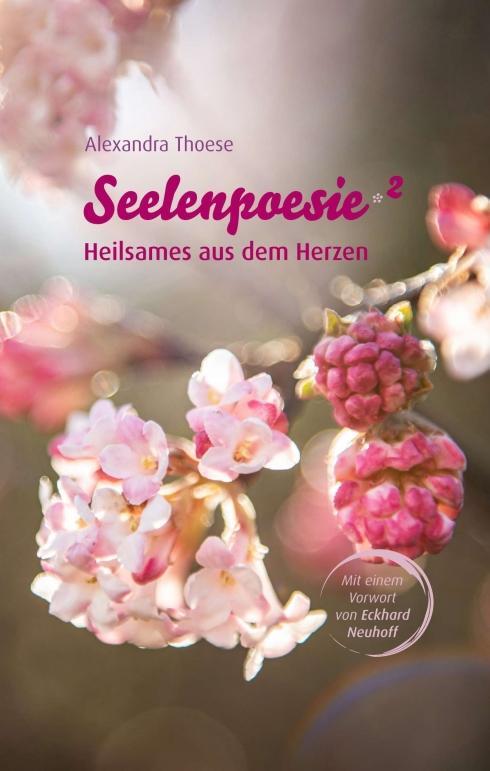 Cover-Bild Seelenpoesie - Heilsames aus dem Herzen
