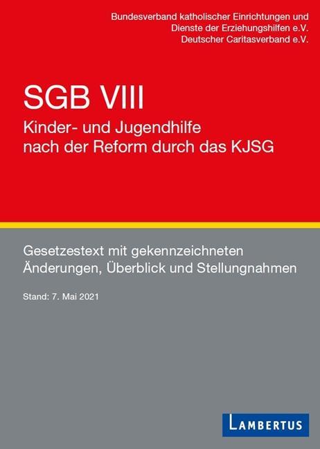 Cover-Bild SGB VIII - Kinder- und Jugendhilfe nach der Reform durch das KJSG