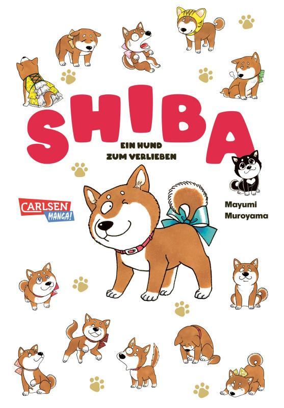 Cover-Bild Shiba - Ein Hund zum Verlieben