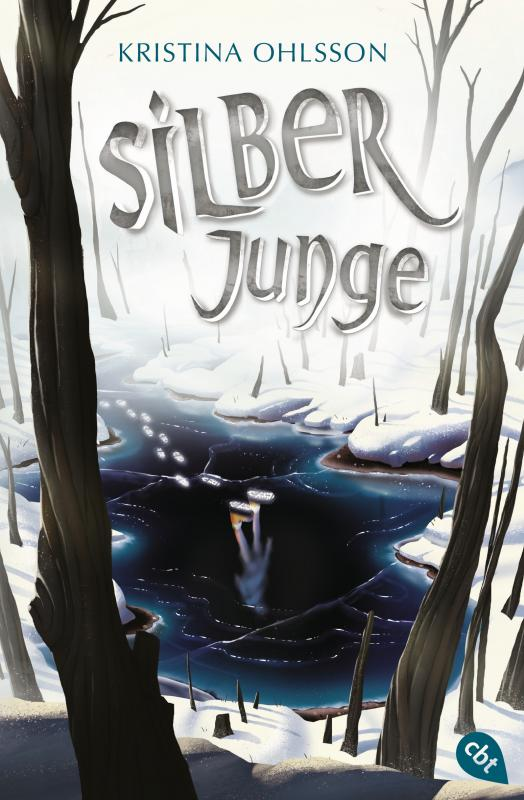 Cover-Bild Silberjunge