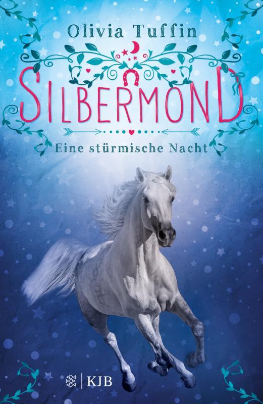 Cover-Bild Silbermond: Eine stürmische Nacht