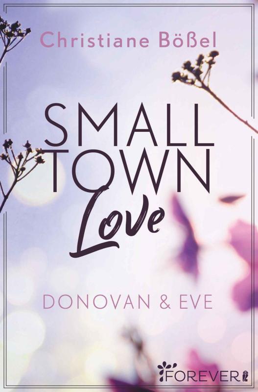 Cover-Bild Small Town Love