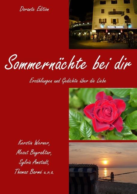 Cover-Bild Sommernächte bei dir