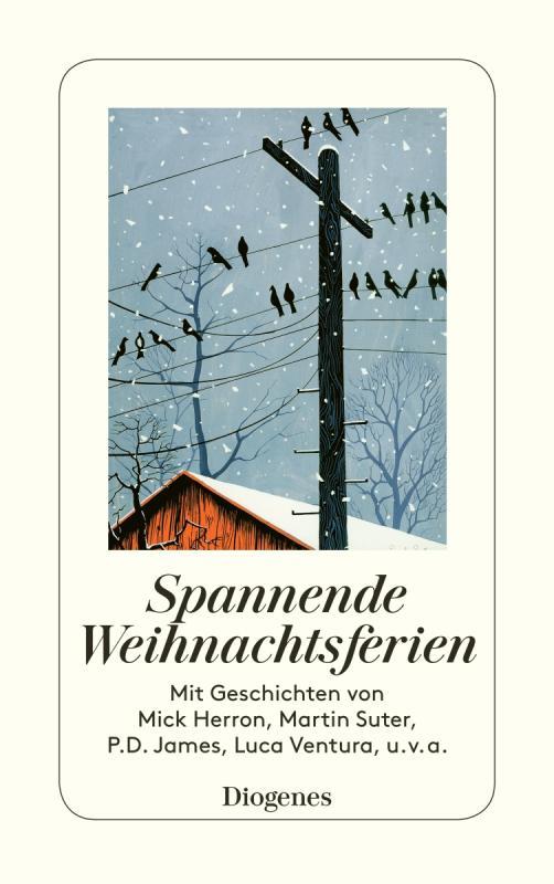 Cover-Bild Spannende Weihnachtsferien