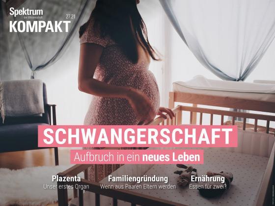 Cover-Bild Spektrum Kompakt - Schwangerschaft