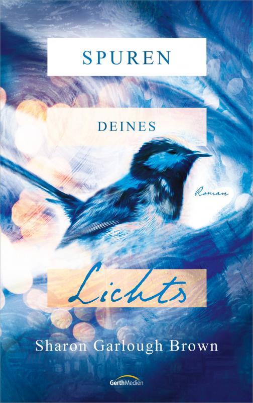 Cover-Bild Spuren deines Lichts