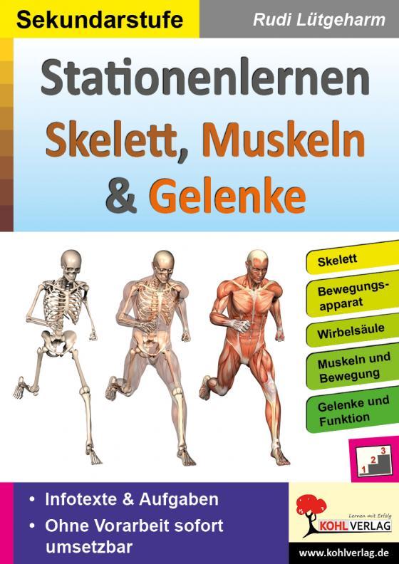 Cover-Bild Stationenlernen Skelette, Muskeln & Gelenke